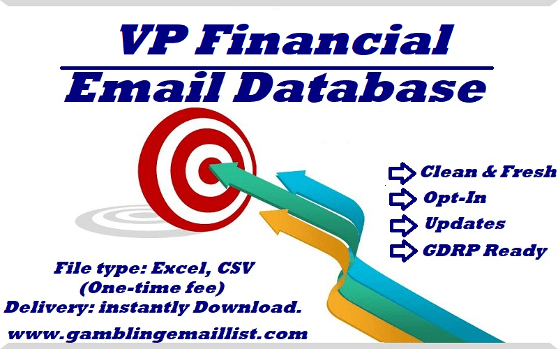 VP Financial Email List